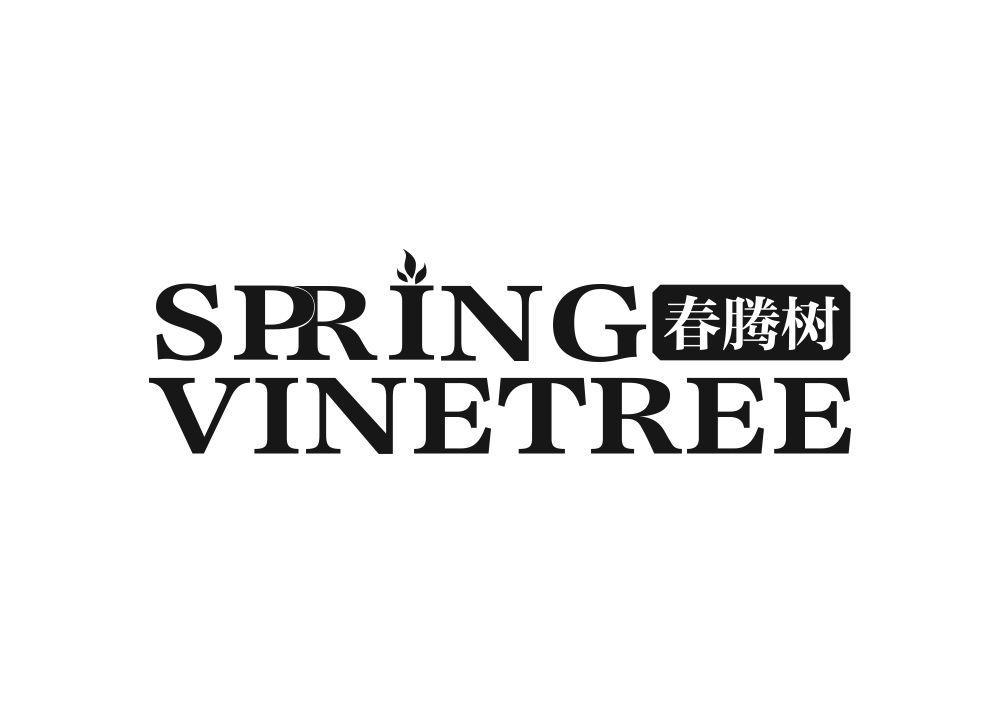 春腾树 SPRING VINETREE