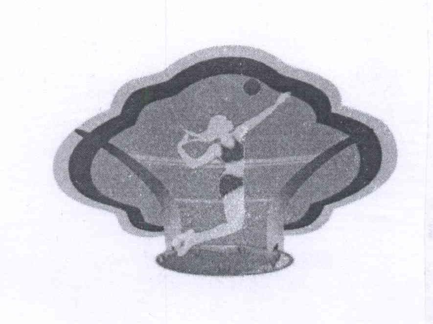 商标文字图形商标注册号 13596855、商标申请人体育励志文化产业有限公司的商标详情 - 标库网商标查询