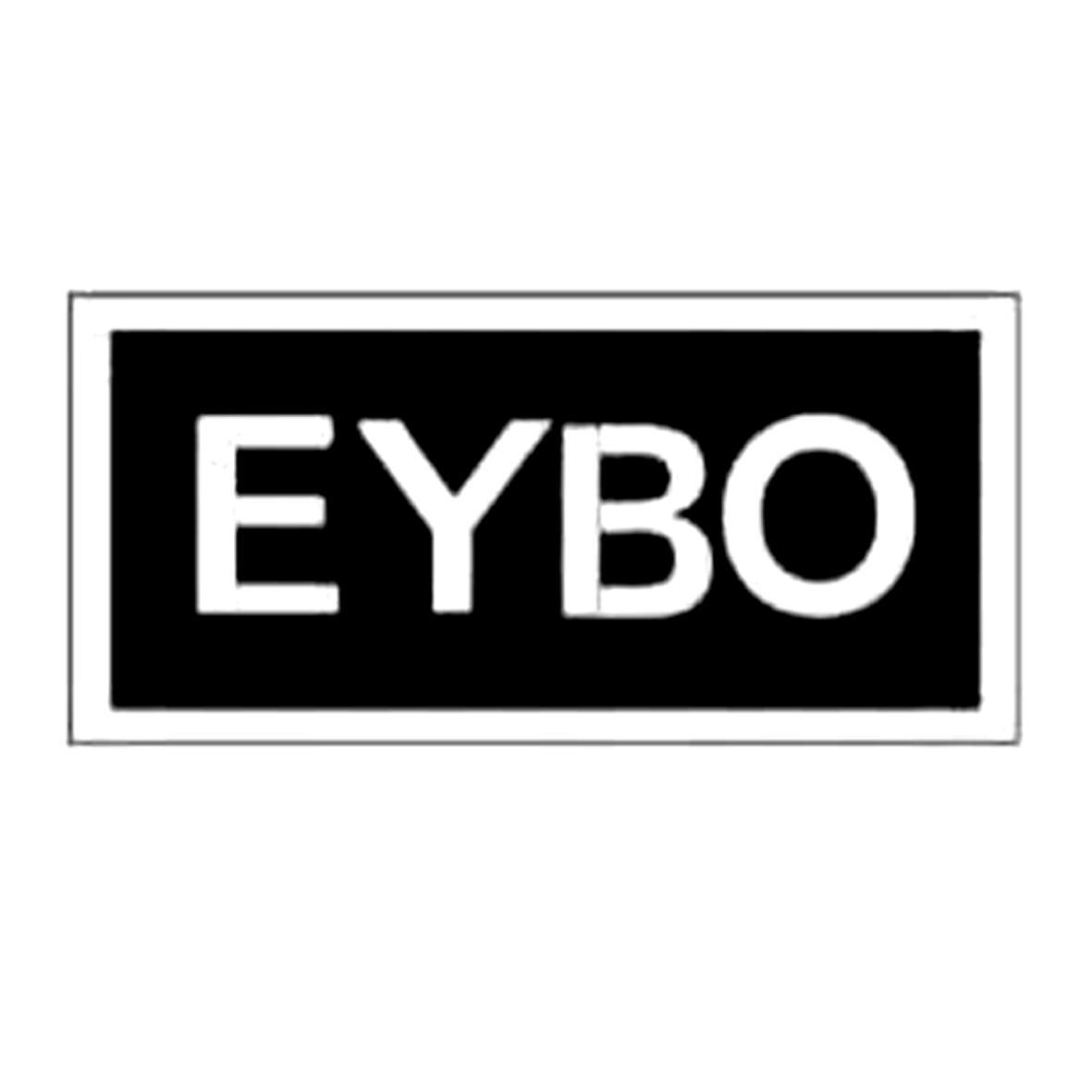 商标文字EYBO商标注册号 16640533、商标申请人一玻机电有限公司的商标详情 - 爱淘标商标查询