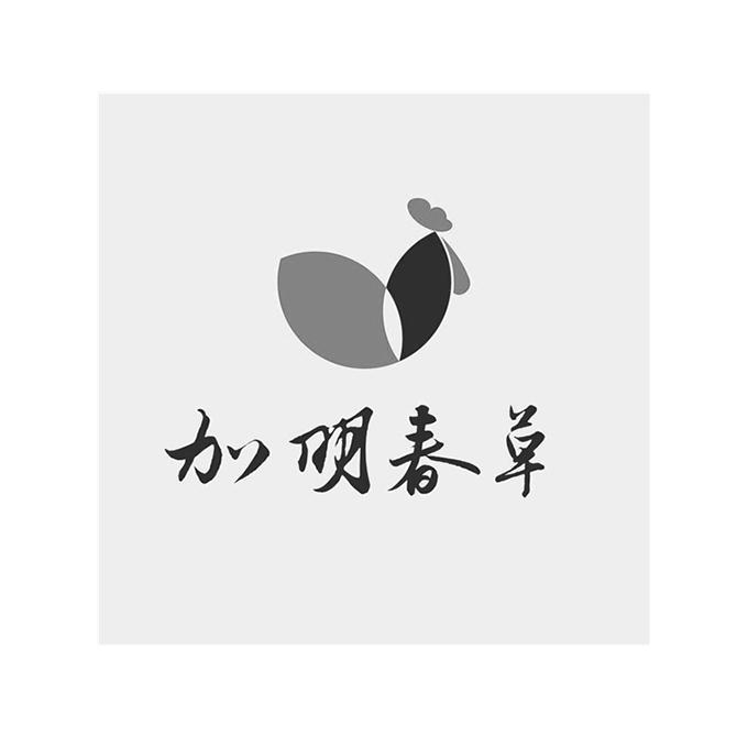 商标文字加明春草商标注册号 42046614、商标申请人吉加明的商标详情 - 标库网商标查询