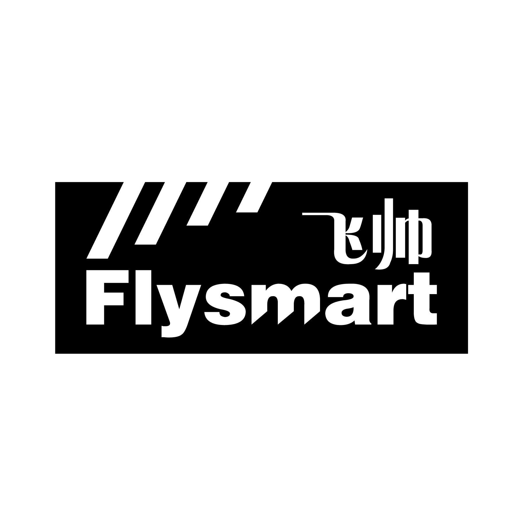 飞帅 FLYSMART