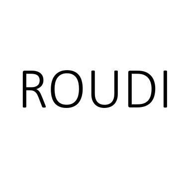 转让商标-ROUDI