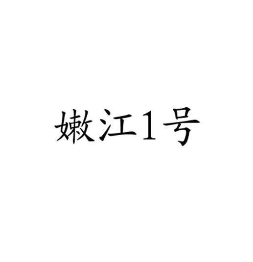 转让商标-嫩江1号