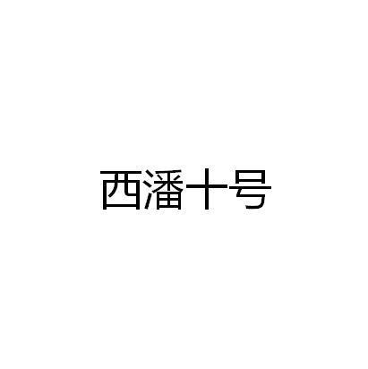 西潘十号_22商标转让_22商标购买-购店网商标转让平台