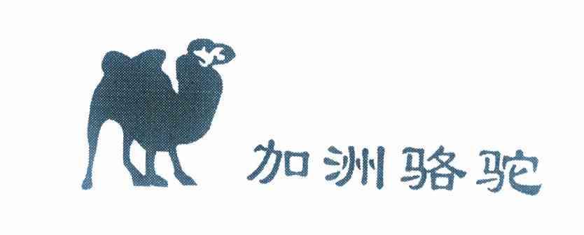 商標文字加洲駱駝商標注冊號 10106650、商標申請人王建平的商標詳情 - 標庫網商標查詢