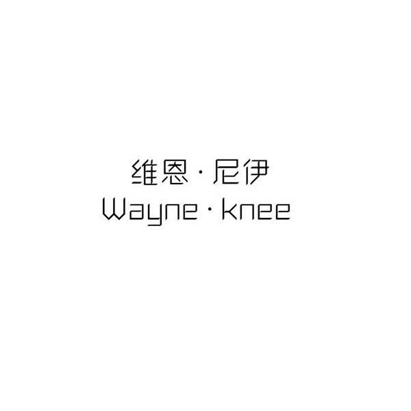 维恩·尼伊 WAYNE·KNEE