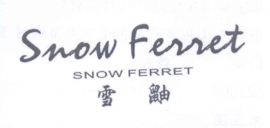 雪鼬 SNOW FERRET