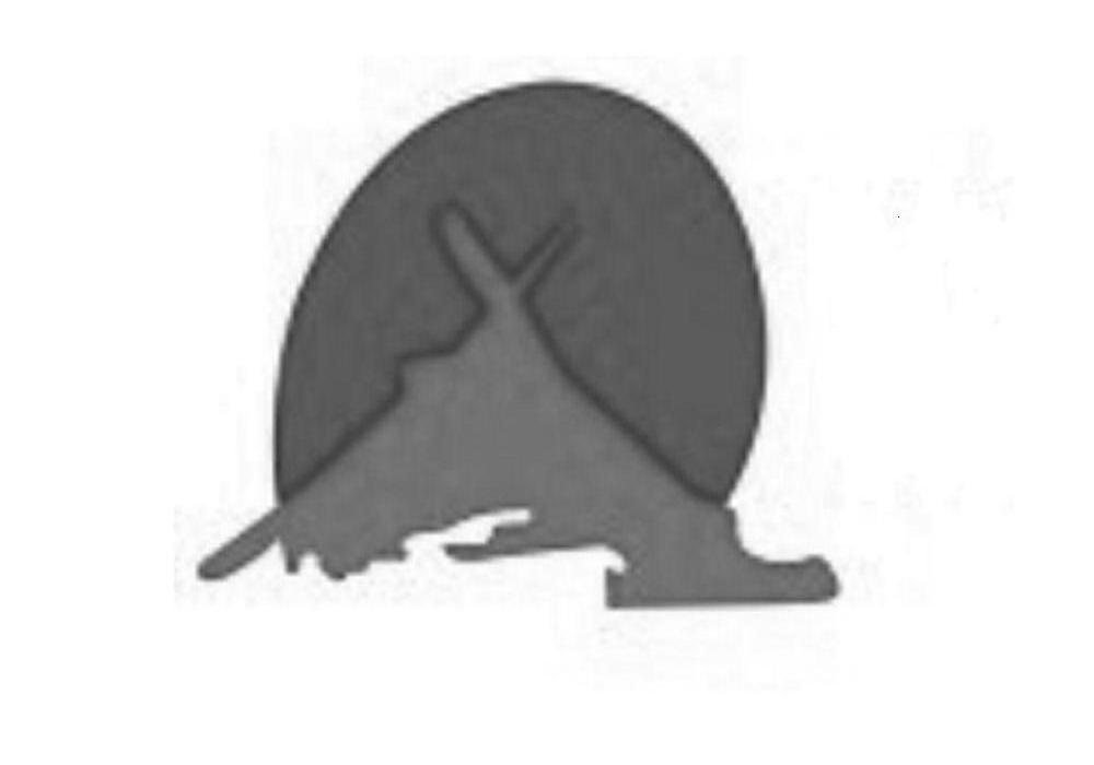 商标文字图形商标注册号 9508330、商标申请人瑞安市伴山户外运动有限公司的商标详情 - 标库网商标查询