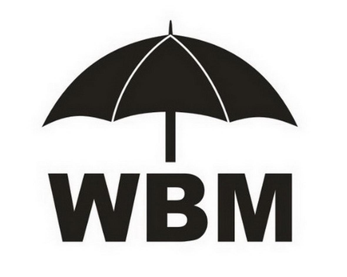 商标文字WBM商标注册号 13841965、商标申请人维必玛电器(汕头)有限公司的商标详情 - 标库网商标查询