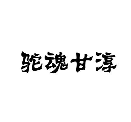 商标文字驼魂甘淳商标注册号 42116276、商标申请人新疆美玉华龙商贸有限公司的商标详情 - 标库网商标查询