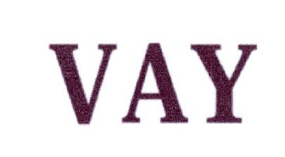 转让商标-VAY