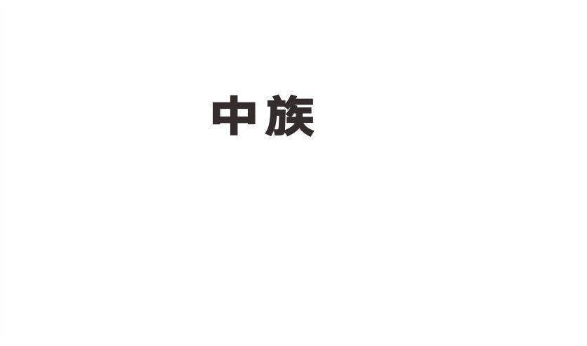 转让商标-中族