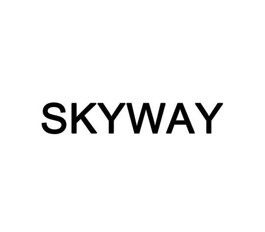 转让商标-SKYWAY
