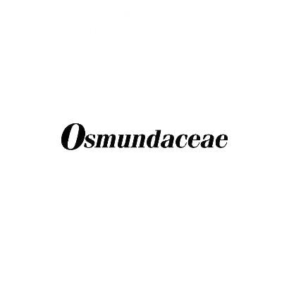 转让商标-OSMUNDACEAE