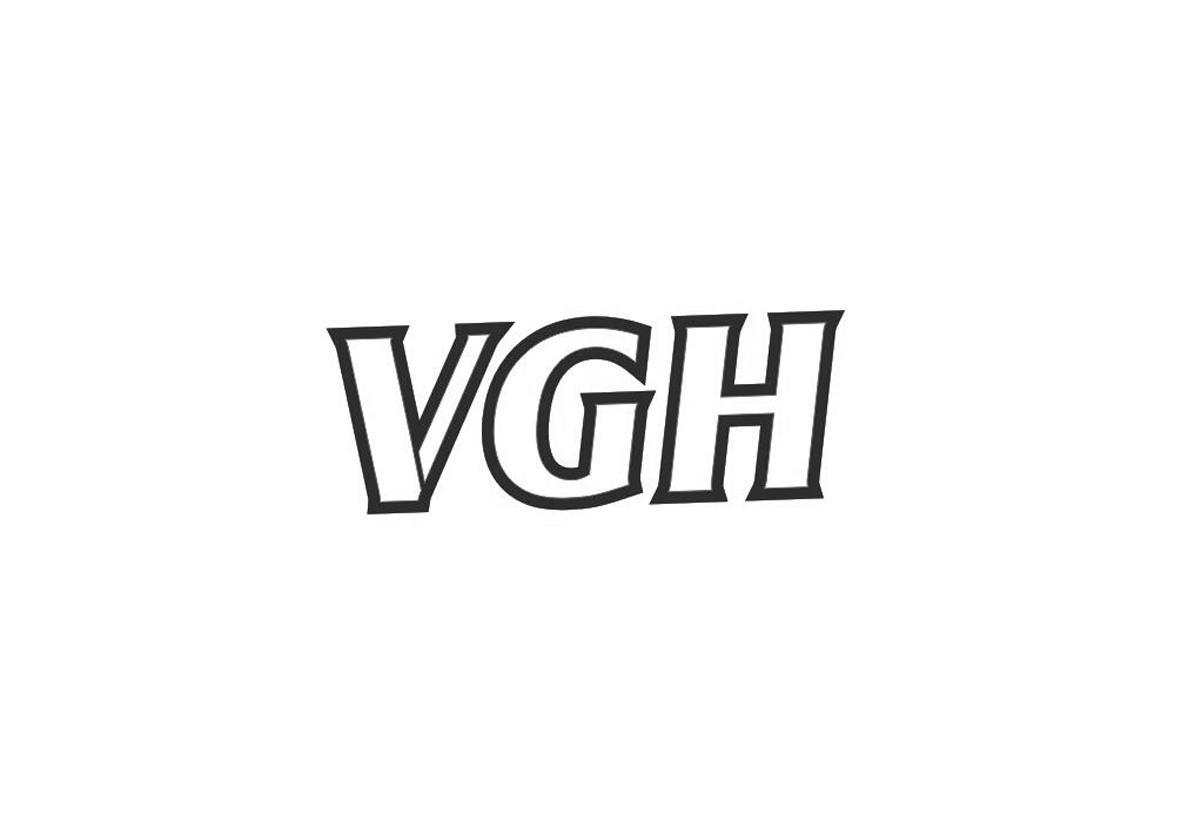 转让商标-VGH