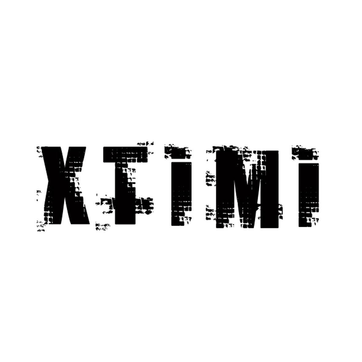 转让商标-XTIMI